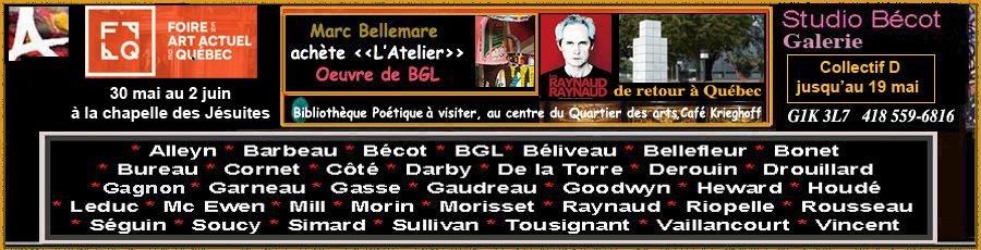 Club des collectionneurs en Arts Visuels de Québec